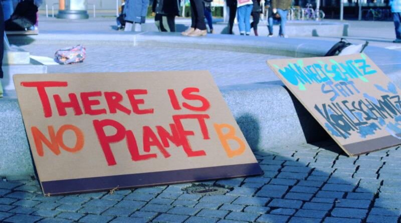 Plakate bei der Fridays for Future Demonstration am 8.2.19 in Leipzig