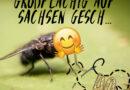 Grossflächig auf Sachsen geschissen Folge 40